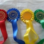 Scentwork UK rosettes